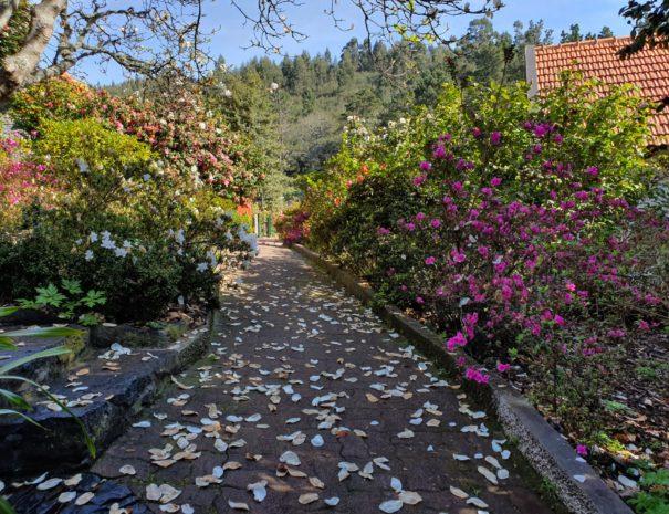 Casas de Pedra | Turismo Rural | Madeira