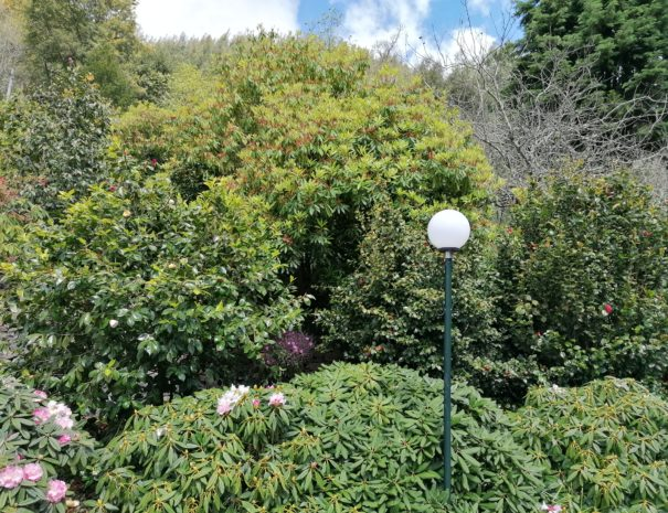 Casas de Pedra - Turismo Rural | Garden Madeira