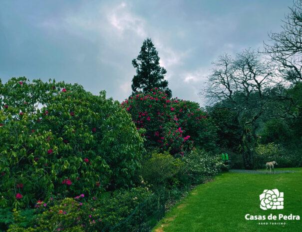 Casas de Pedra | Rural tourism | Madeira 2021